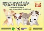 Приюту для беспризорных животных в Бресте требуется помощь волонтеров