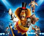 """цирковое представление """"Мадагаскар"""""""