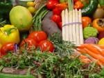 распродажа плодоовощной продукции